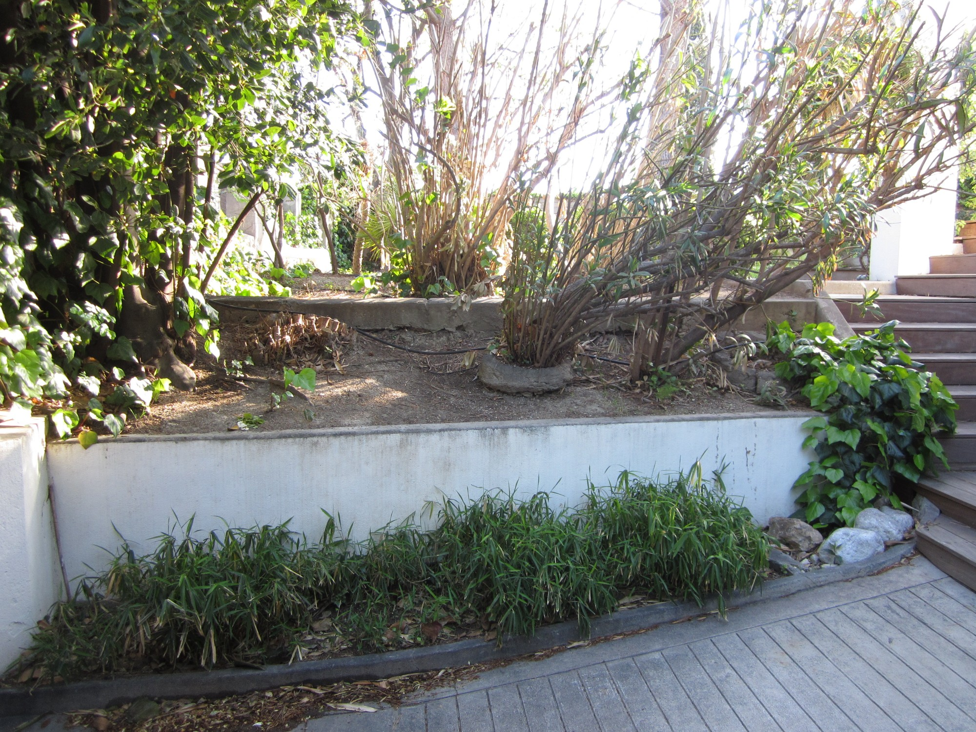 Am nagement paysager de jardin sec marseille vert tige for Photo de jardin paysager