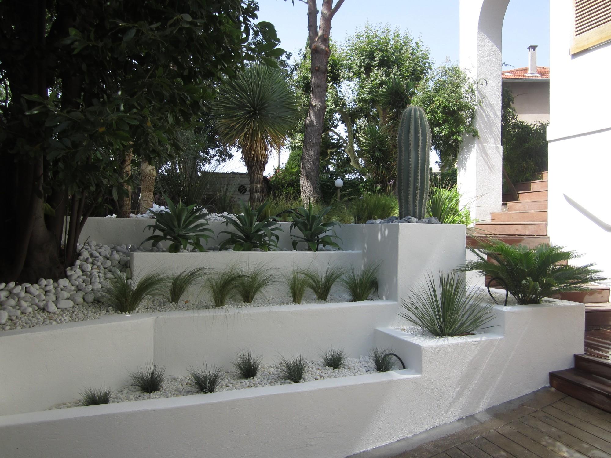 Amenagement Exterieur Jardin Avec Galets aménagement paysager de jardin sec à marseille - vert tige