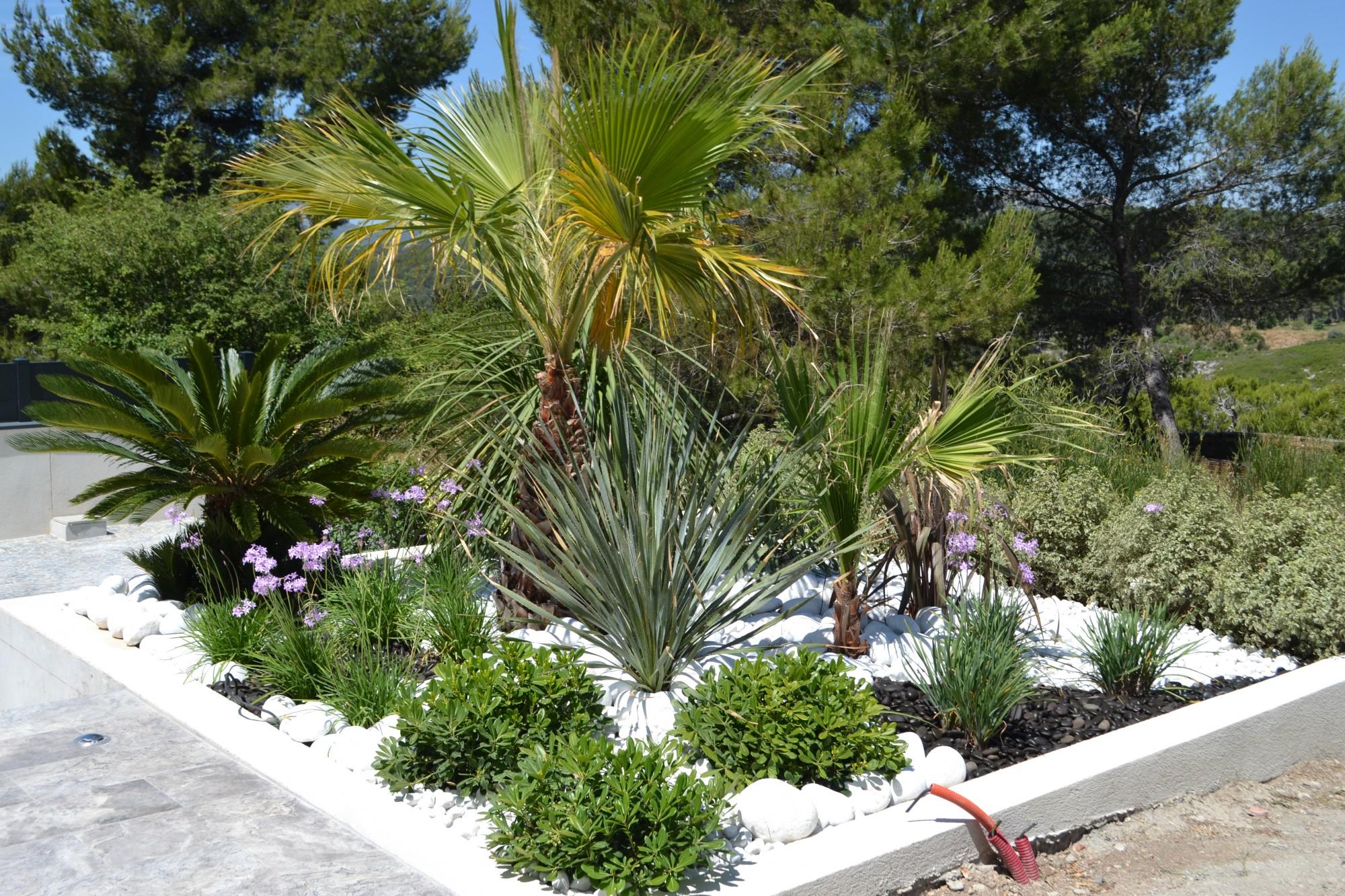 Am nagement paysager contemporain de jardini res autour d for Amenagement paysager autour piscine