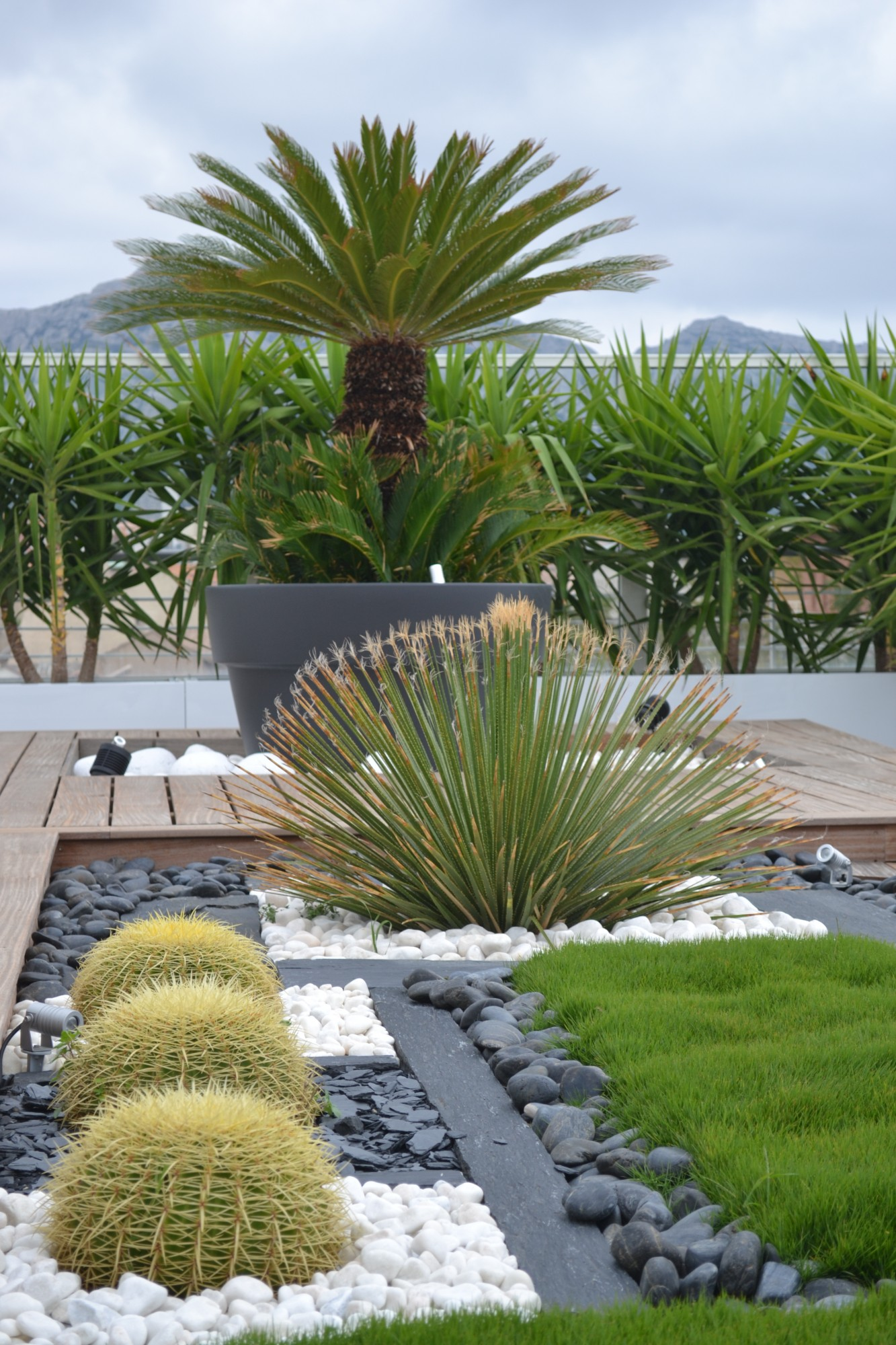 Terrasse contemporaine marseille cr ation d 39 une for Espace vert terrasse