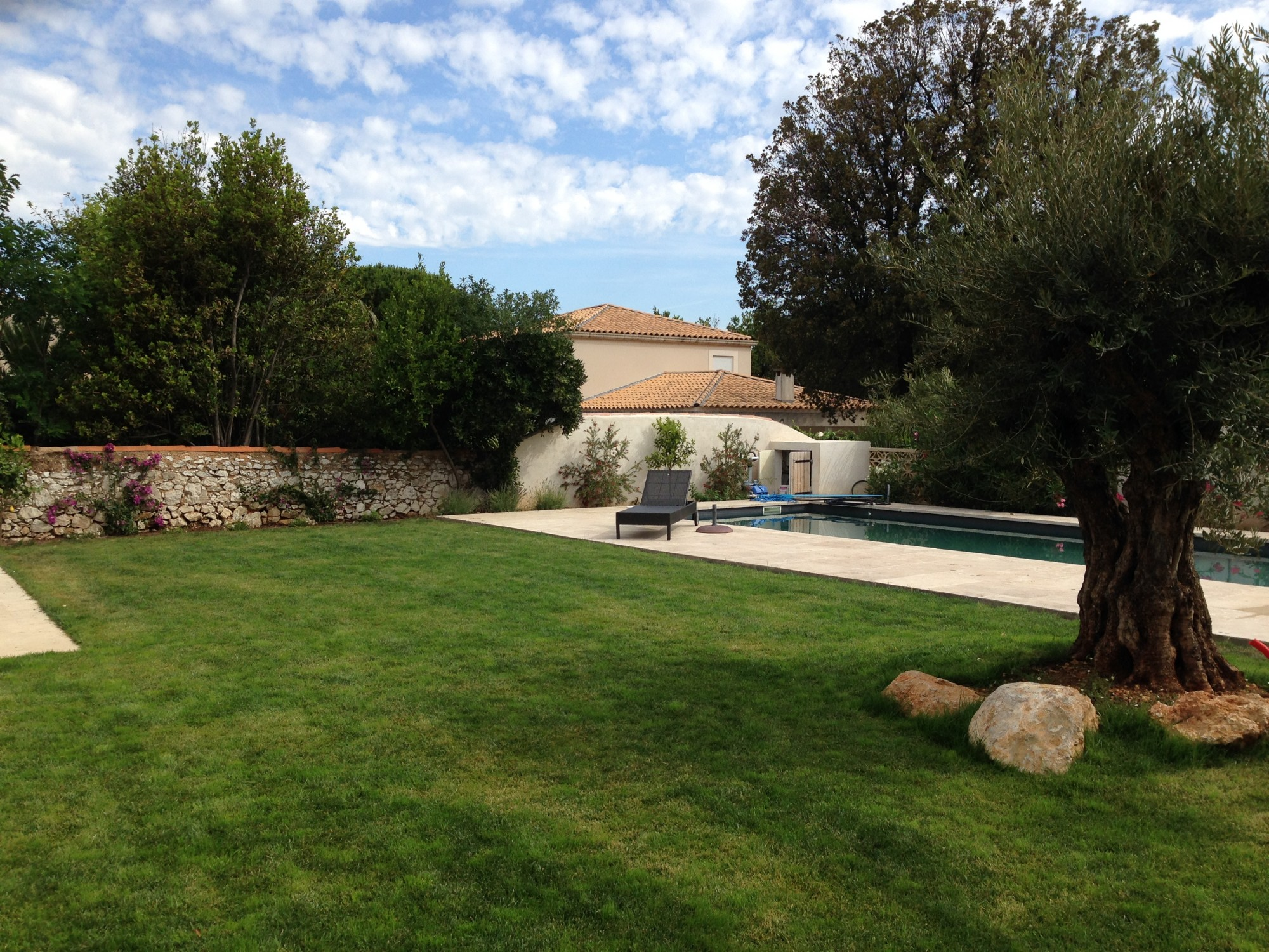Realisation D Un Jardin Provencal A Marseille 13008 Vert Tige